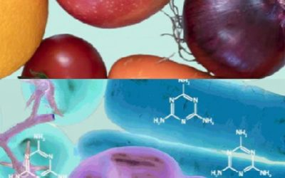 Mixtures methodology equips EFSA for multiple chemicals
