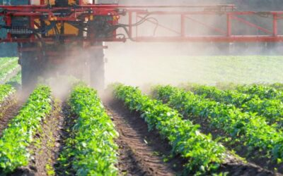 Detecting Pesticide Residues with BELD