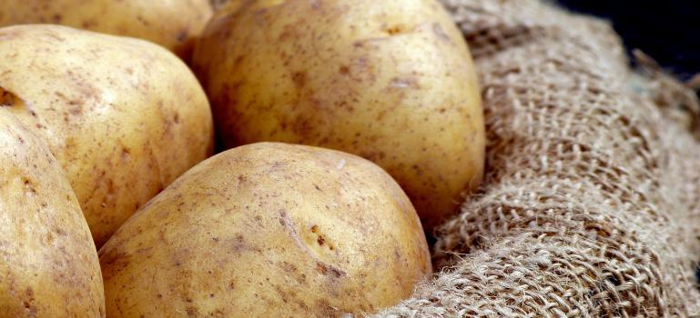 Glycoalkaloids in potatoes: public health risks assessed