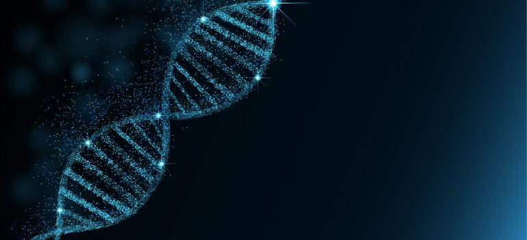 EFSA advises on risk assessment of engineered gene drives