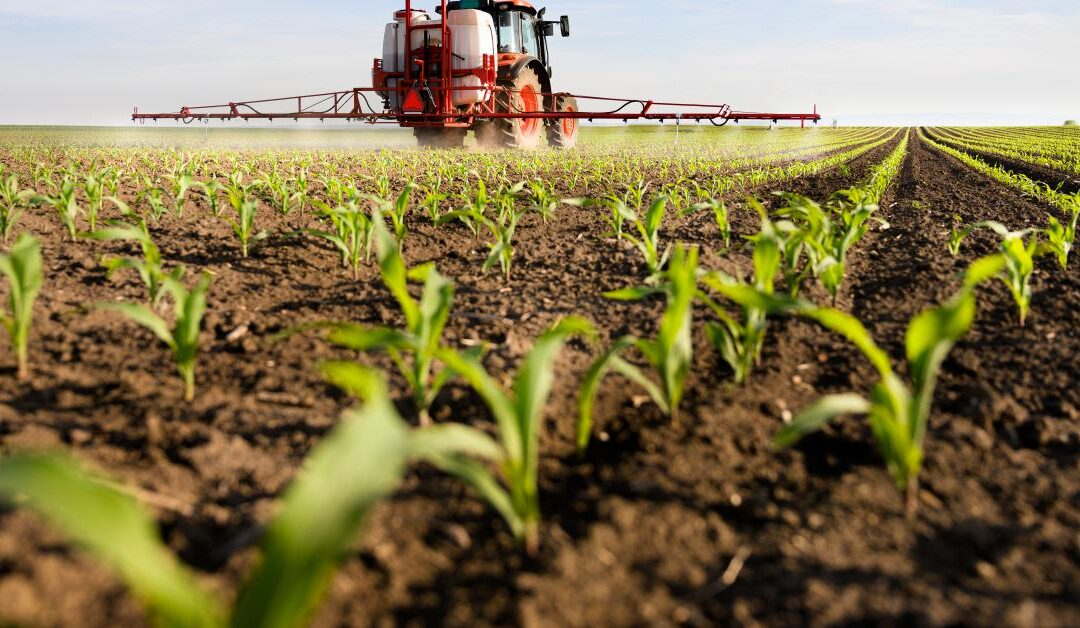 Pesticides in food: latest figures published